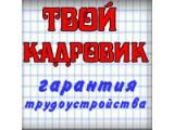 Логотип Информационно - кадровая служба по оказанию услуг в сфере трудоустройства населения Твой Кадровик