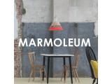 Логотип Мармолеум Центр
