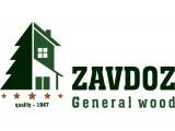 Логотип ZAVDOZ